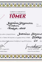 Диплом Томер